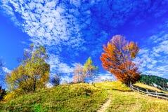 Carpathian Mountains, Autumn landscape in Magura Stock Photos
