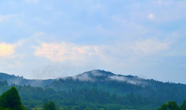 Carpathian mountains and cloudy blue sky. Nature background with mountain silhouettes and forest trees in mist. Travel background. Foggy summer mountain Stock Photo