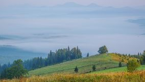 Summer morning and mist in the valley. Time lapse. Carpathian mountains covered with forest. Summer morning. Fog in the valley. Blue peaks in the rear plan. Time stock video