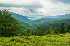 Carpathian mountains and forest. Carpathian mountains and forest landscape during bicycle hike. Near Komsomol's'k, Ukraine Royalty Free Stock Image