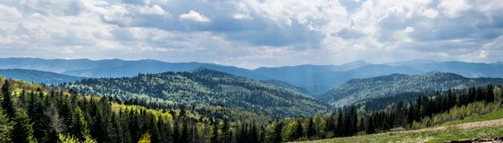 Sun rays Carpathian Mountains landscape. Carpathian Mountains forest landscape in cloudy spring day. On the horizon, the mountain peaks are still in the snow royalty free stock images