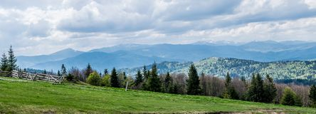 Spring panorama of the Carpathian Mountains. Carpathian Mountains forest landscape in cloudy spring day. On the horizon, the mountain peaks are still in the snow royalty free stock image