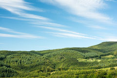 Carpathian Mountains Forest View Royalty Free Stock Photography