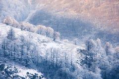 Carpathian mountains frozen hills Royalty Free Stock Photo