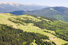 Carpathian Mountains in June. In some places the snow is not melted Stock Photo