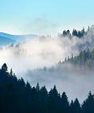 Carpathian Mountains landscape Stock Image