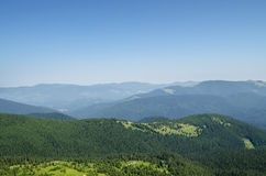 Carpathian mountains landscape and forest. Royalty Free Stock Photo