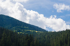 The Carpathian Mountains 39. The Carpathian Mountain landscape view in the Ukrainian part of mountains Stock Photography