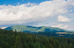The Carpathian Mountains 35. The Carpathian Mountain landscape view in the Ukrainian part of mountains Royalty Free Stock Photography
