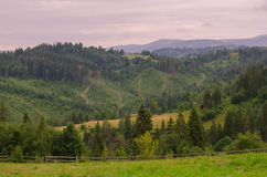 The Carpathian Mountains 32. The Carpathian Mountain landscape view in the Ukrainian part of mountains Stock Image