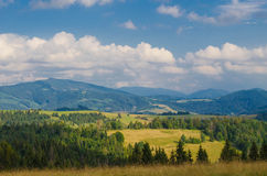 The Carpathian Mountains 31. The Carpathian Mountain landscape view in the Ukrainian part of mountains Royalty Free Stock Images