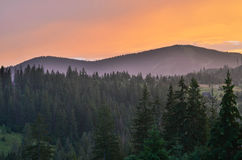 The Carpathian Mountains 28. The Carpathian Mountain landscape view in the Ukrainian part of mountains Royalty Free Stock Images