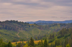 The Carpathian Mountains 24. The Carpathian Mountain landscape view in the Ukrainian part of mountains Royalty Free Stock Photography