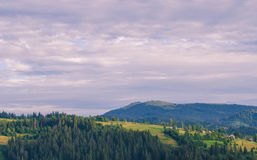 The Carpathian Mountains 21. The Carpathian Mountain landscape view in the Ukrainian part of mountains Stock Photo
