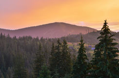 The Carpathian Mountains 20. The Carpathian Mountain landscape view in the Ukrainian part of mountains Stock Image