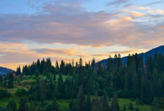 The Carpathian Mountains. The Carpathian Mountain landscape view in the Ukrainian part of mountains Royalty Free Stock Photography