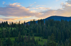 The Carpathian Mountains 2. The Carpathian Mountain landscape view in the Ukrainian part of mountains Royalty Free Stock Images
