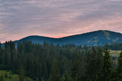 The Carpathian Mountains 4. The Carpathian Mountain landscape view in the Ukrainian part of mountains Stock Photography