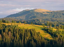 The Carpathian Mountains 5. The Carpathian Mountain landscape view in the Ukrainian part of mountains Stock Images