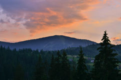 The Carpathian Mountains 7. The Carpathian Mountain landscape view in the Ukrainian part of mountains Royalty Free Stock Photo