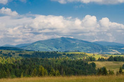 The Carpathian Mountains 12. The Carpathian Mountain landscape view in the Ukrainian part of mountains Royalty Free Stock Image