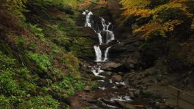 Pure Mountain Stream. Cascade Waterfall. Autumn Forest stock video