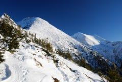 Carpathian Mountains in Romania royalty free stock photos
