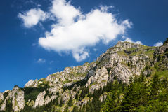 Carpathian Mountains, Romania Royalty Free Stock Photos