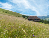 Carpathian mountains rural landscape with traditional wooden house at meadow Royalty Free Stock Image