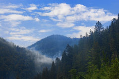 Carpathian mountains, shrouded in small clouds Royalty Free Stock Photo