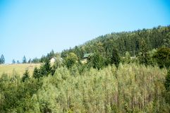 Carpathian mountains summer landscape with green hills and wooden fence, Royalty Free Stock Image