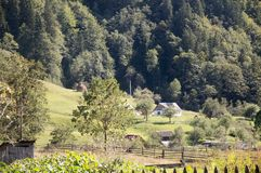 Carpathian mountains summer landscape with green hills and wooden fence, Royalty Free Stock Images