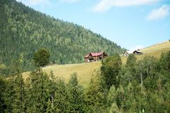 Carpathian mountains summer landscape with green hills and wooden fence, Royalty Free Stock Photography