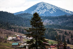 Carpathian mountains Royalty Free Stock Photos