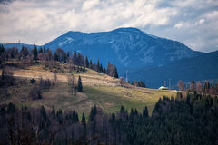 Carpathian mountains Stock Photo