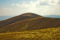 Carpathian Mountains. Royalty Free Stock Photo