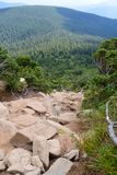 Carpathian mountains, Ukraine: Way to Hoverla, the highest Ukrainian mountain. In cloudy summer day stock image