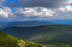 Carpathian mountains, Ukraine: Way to Hoverla, the highest Ukrainian mountain. In cloudy summer day royalty free stock photos