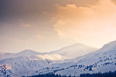 Carpathian mountains under snow in the winter Royalty Free Stock Photos