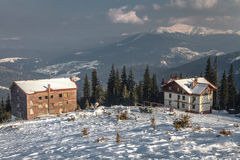 Carpathian mountains under snow in the winter Stock Images