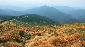 Beautiful mountain landscape. Carpathian Mountains, view from Mount Goverla, wind, grass sway. Picturesque highland landscape. Atmospheric panorama from hill stock video footage
