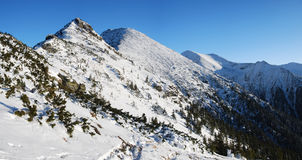 Carpathian Mountains in winter Stock Photos