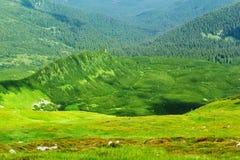 carpathian najlepszy widok góry Fotografia Stock
