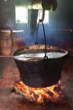 Carpathian ost för produktion på lantgården ukraine Royaltyfri Bild