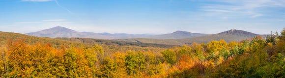 Carpathian panorama Royaltyfria Bilder