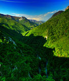 carpathian panorama Arkivfoton
