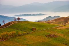 Carpathian rural area in autumn at dawn. Leafless trees by the road. haystacks on the grassy meadow. fog in the distant valley behind the hill. gorgeous royalty free stock photography