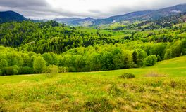 Carpathian rural area in springtime. Lovely landscape of mountainous countryside Royalty Free Stock Images