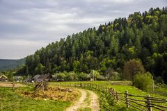 Carpathian rural landscape. A rural landscape at carpathian mountains with fence, home and some cows at back, national park Skolevski beskidy, Lviv region of Royalty Free Stock Photo