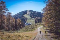 Carpathian& x27; s山风景 图库摄影